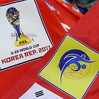 2017 U-20 월드컵패치(국내컷)